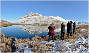 Dalton Highway Photography Tour