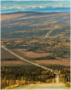 Dalton Highway Adventure Tour