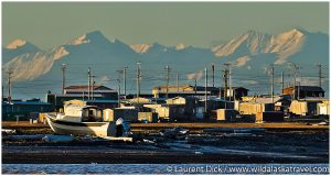 Kaktoivk Alaska with Brooks Range