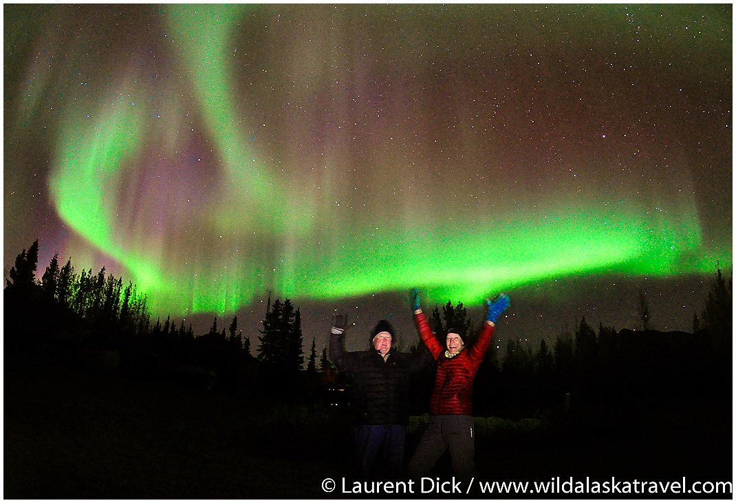 Experience the Northern Lights with Wild Alaska Travel