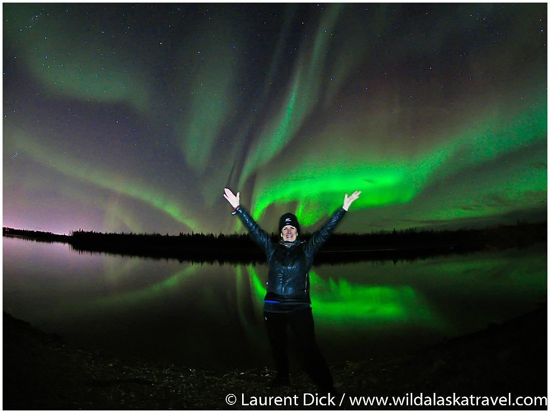 Alaska Polar Bear & Aurora Borealis Tour with Denali Add-on - Wild Alaska Travel