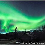 01-Alaska-Northern-Lights-Wiseman-Brooks-Range-Photo-c-Laurent-Dick-Wild-Alaska-Travel