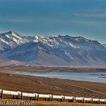 14-Alyeska-Pipeline-Pumpstation-4-c-Laurent-Dick-Wild-Alaska-Travel
