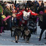 2012-Iditarod-Champion-Dallas-Seavey-c-Laurent-Dick