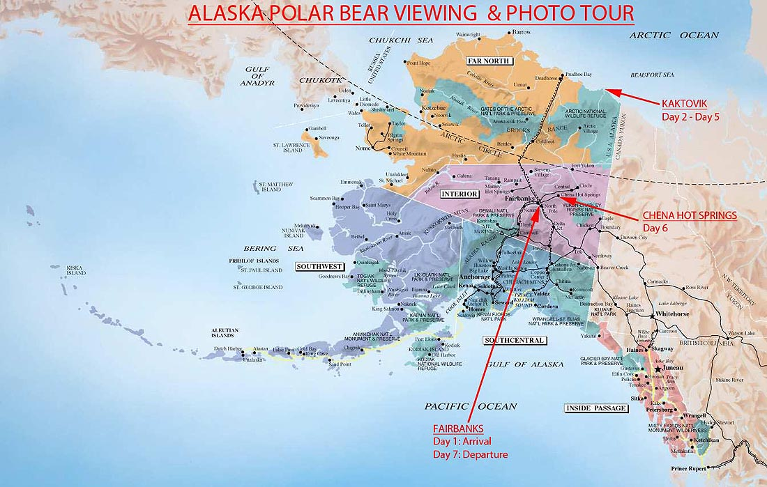 Kaktovik Alaska Map.Unique Alaska Polar Bear Tour Wild Alaska Travel