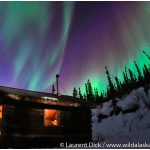 Alaska-Northern-Lights-Tour-with-Wild-Alaska-Travel-Photo-c-Laurent-Dick-All-Rights-Reserved