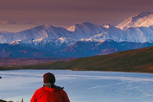 Alaska-Polar-Bear-and-Northern-Lights-Tour-with-Denali-National-Park-Add-on1