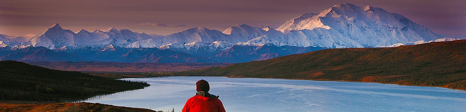 Alaska Polar Bear & Northern Lights Tour with Denali Add-on