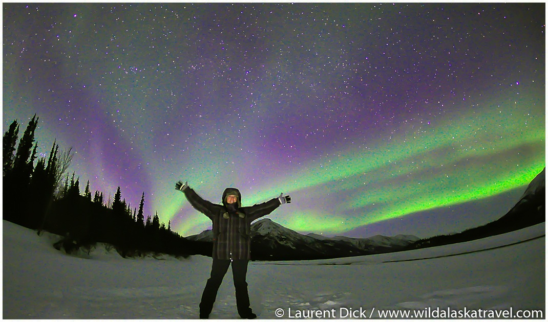 #1 Alaska Northern Lights Tour