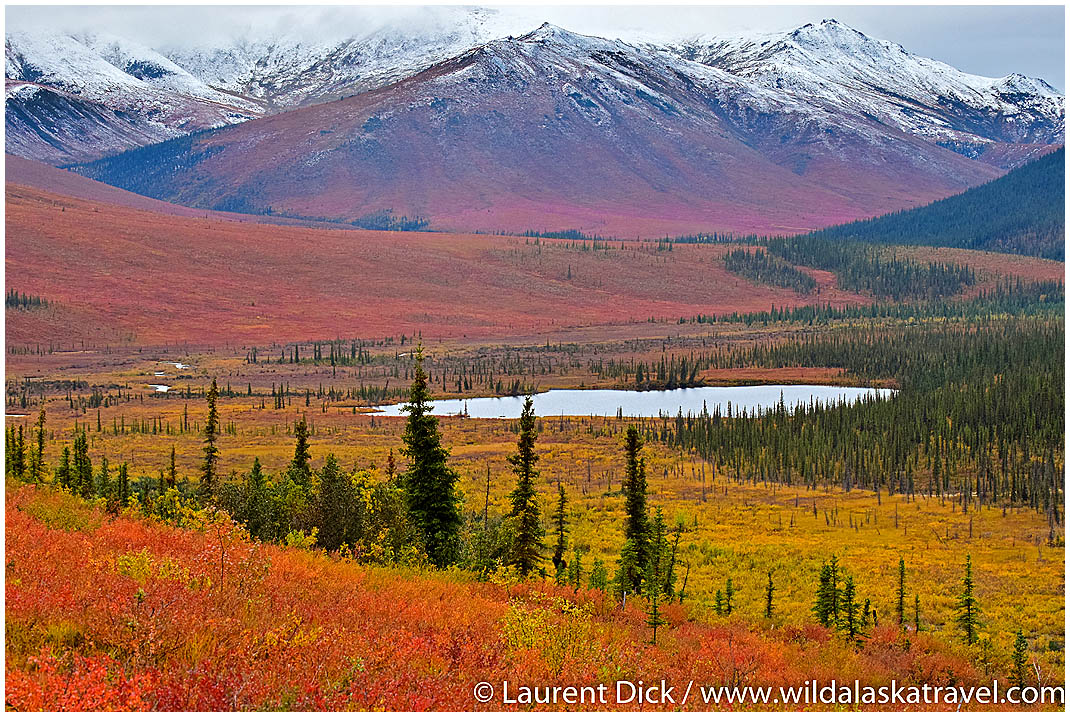 Beautiful colors in the Brooks Range in the fall.