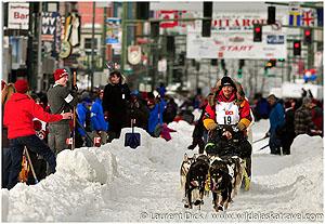Day-4-Wendy-Zens-Iditarider-Mitch-Seavey-2016-Iditarod-Ceremonial-Start-Photo-c-Laurent-Dick-Wild-Alaska-Travel