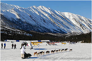 Day-6-Iditarod-Tours-with-Wild-Alaska-Travel-photo-c-Laurent-Dick