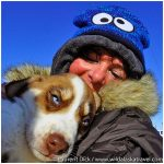 Iditarod-Finish-Tour-Dog-mushing-experience-Photo-c-Laurent-Dick-Wild-Alaska-Travel