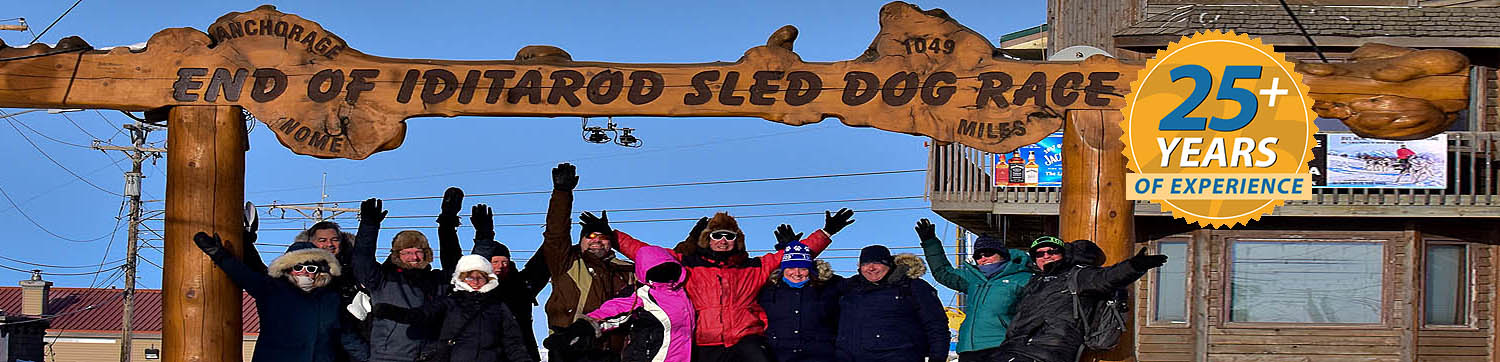 Iditarod Finish & Northern Lights Tour