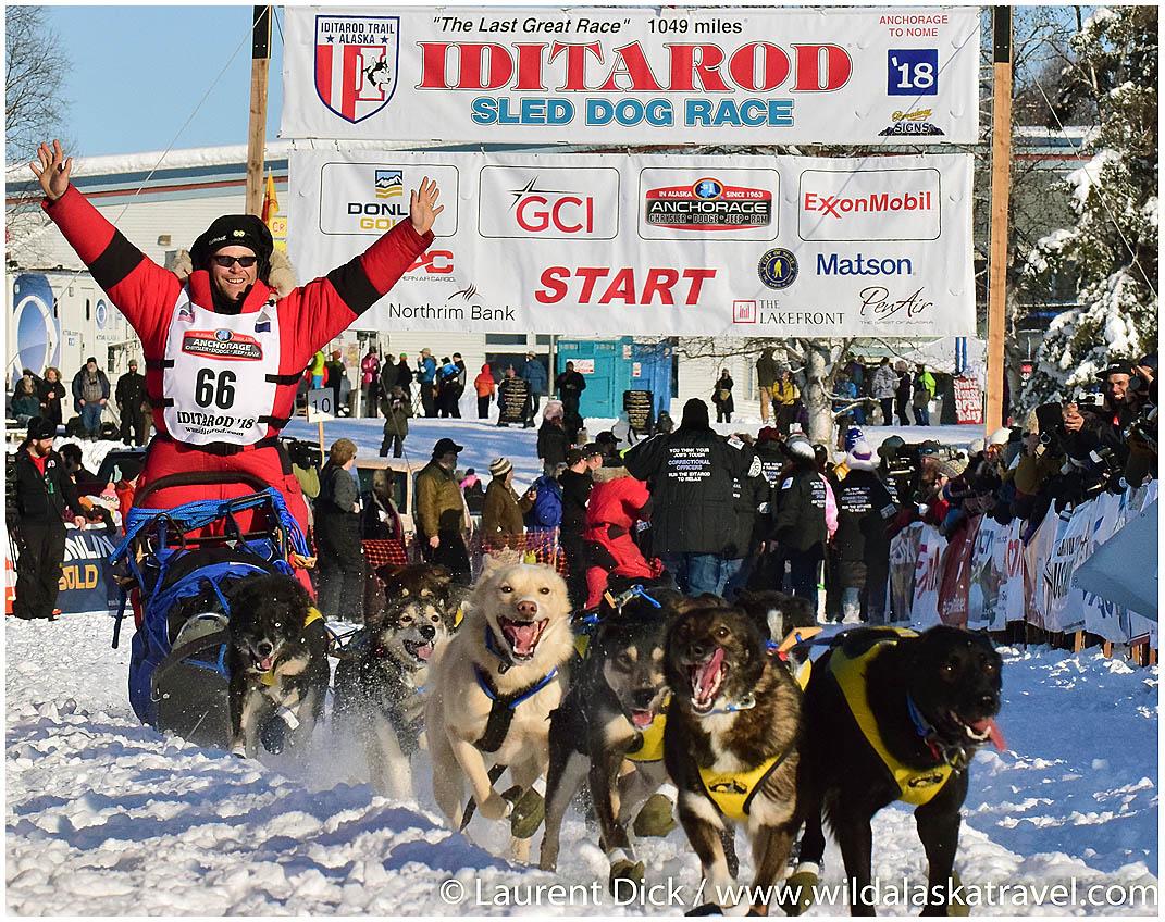 Iditarod Start Tour - Willow Restart