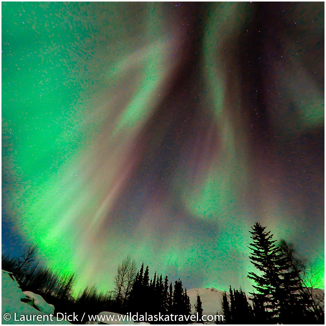 Northern Lights Wiseman