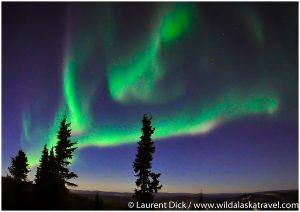 Northern Lights north of Fairbanks