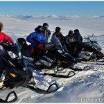 Wild-Alaska-Travel-Iditarod-Finish-Tour-Group-c-Laurent-Dick-Wild-Alaska-Travel